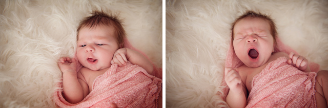 Newborn_Photographer_Brisbane_001