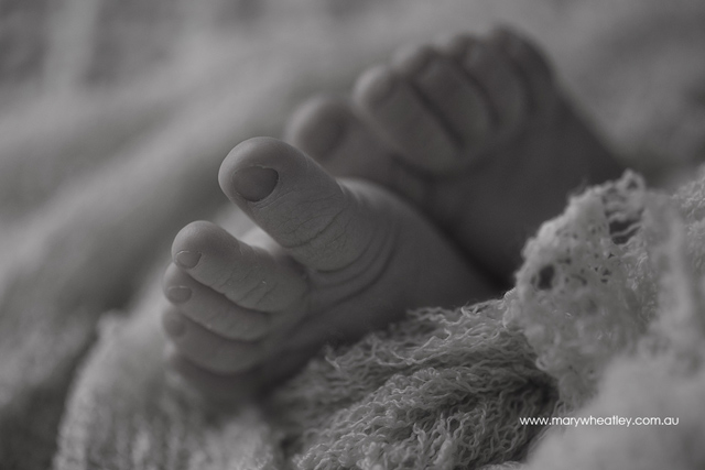 Brisbane_Newborn_Photographer_003