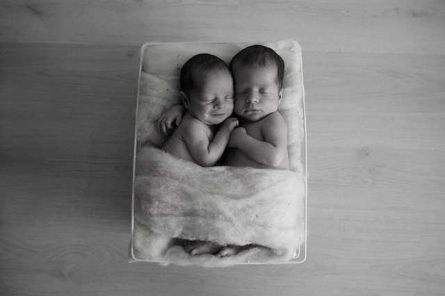 Baby Twins photos Brisbane